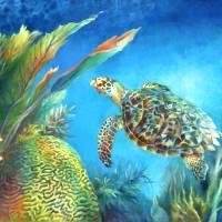 Sea eScape IV - Hawksbill Turtle Flying Free by Nancy Tilles