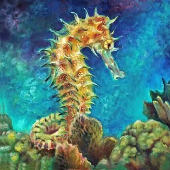 Sea Horse I By Nancy Tilles