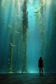 Kelp Forest By Ivanlo
