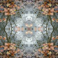 Cloudy Reflections Art Prints & Posters by Amy Blount Achor