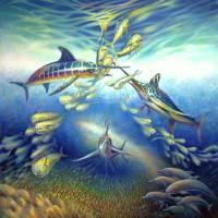 Marlin Frenzy by Nancy Tilles