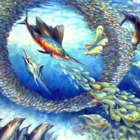 Sailfish Plunders Baitball by Nancy Tilles