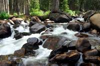 Colorado Tumbeling  Stream