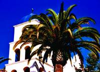 Palm Church