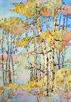 Aspen Color by Joyce Hicks