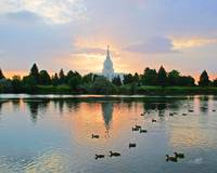 20x24 Morning Swim Idaho Falls Temple