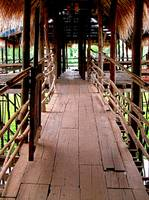 Wooden Foot Bridge