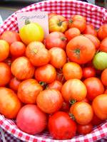 Tigerella Tomatoes 873