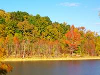 Autumn at Barren River Lake
