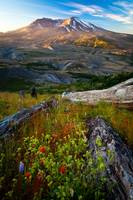 Mount St Helens Dawn