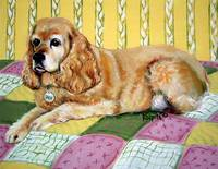 Sadie - Cocker Spaniel Dog on Quilt