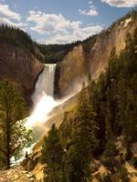 Yellowstone River, Lower Falls