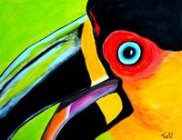 The smiling toucan