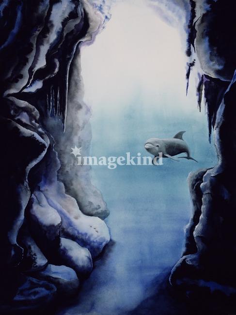 Caverna Diablo I (dolphin watercolor)