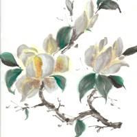 Bold Magnolias by Barb Tallberg