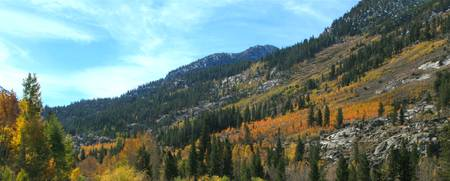 Fall on Bishop Creek