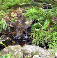Small Waterfall Garden I I