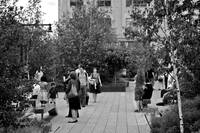 The High Line_ New York City_ USA83775668296102669
