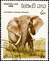 African elephant stamp.