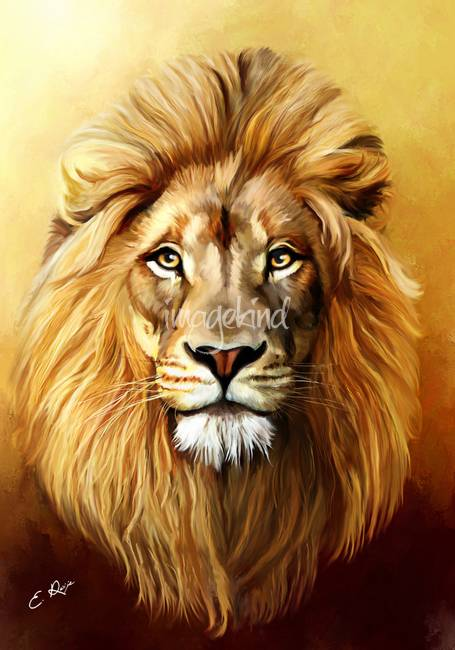 lion by ellen paintings