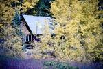 """Rocky Mountain Cabin Hideaway by James """"BO"""" Insogna"""