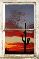 Arizona Saguaro Sunset Picture Window View