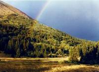 Colorado mountain rainbow