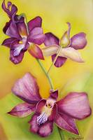 Watercolor of Orchids 22x28