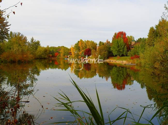 Fall Colors Photography - Rivers Edge