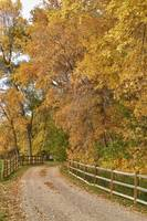 Autumn Country Ranch  Road V