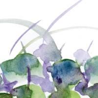 Watercolors gallery