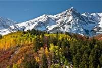 ASPENS AND MOUNTAIN SNOW