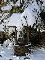 Snow covered wishing well