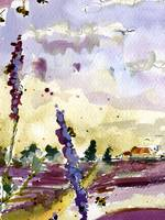 Lavender and Bees Watercolor #11071024