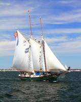 Schooner Thomas Lannon sailing Cape Cod Bay