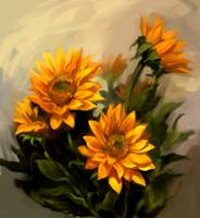 Girasoles-Sunflowers