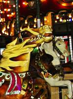 Carousel Horses Riding High