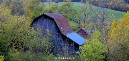 Back Of The Barn