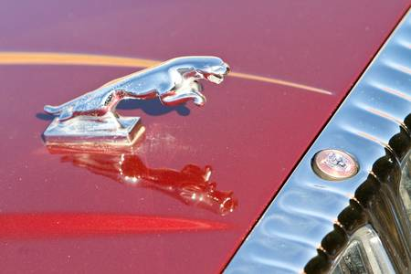 Jaguar Hood Ornament