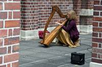 Street Harp player and her fingers