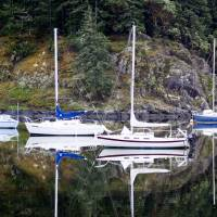 4 Sailboats in Coopers Cove, Sooke, BC Art Prints & Posters by Janette Murchie