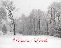 Peace on Earth Snow Scene
