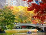 Autumn fun in Central Park, New York City