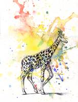 Giraffe Walking