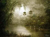 Tranquility - Misty River