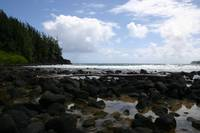 Lava Rock Shores