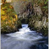 above fairy glen Art Prints & Posters by chris waller