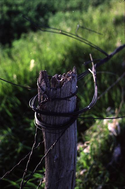 Linewrecked Openwire Tied to Fence Post