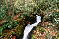 Lower Huskey Branch Falls