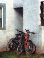 Bicycles in Yard